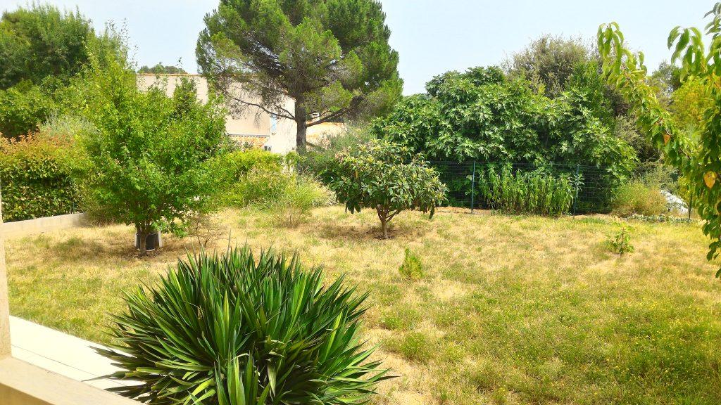 terrain 34730 Saint Vincent de Barbeyrargues